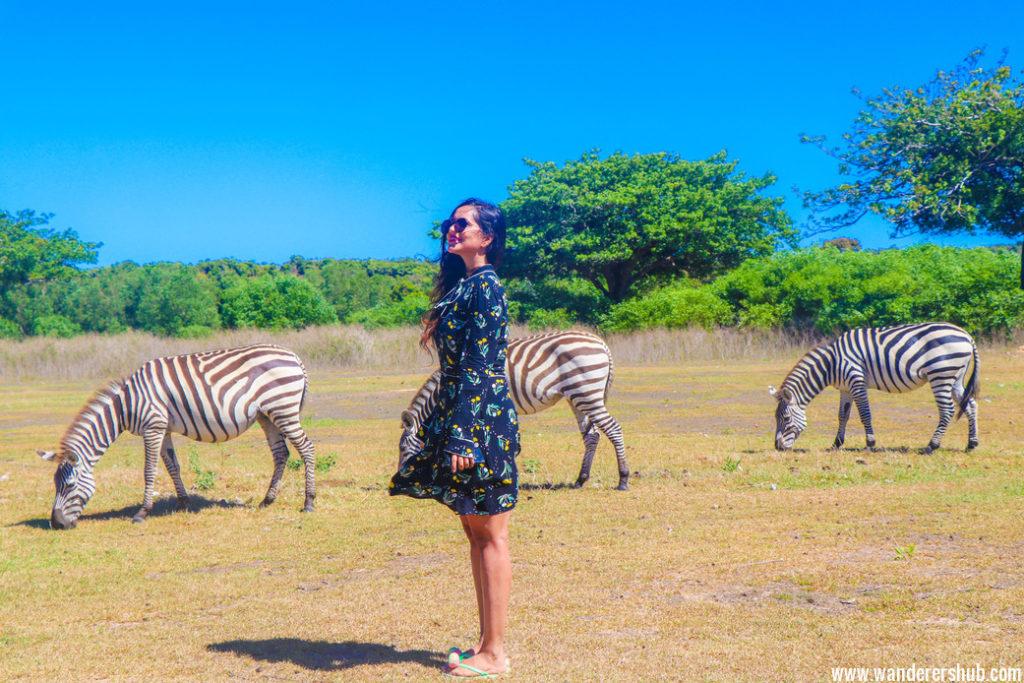 visit coron Calauit Safari Park