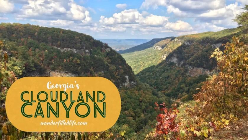 Georgia's Cloudland Canyon