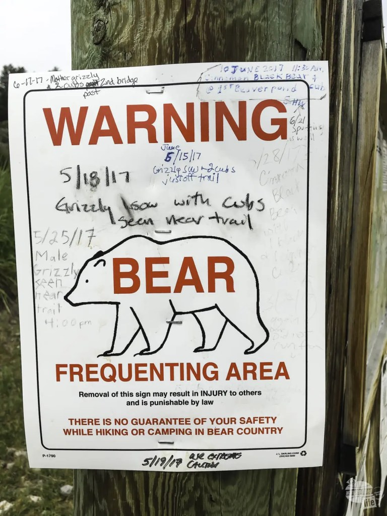 Look for any warning signs at the trailhead of your Yellowstone hikes!