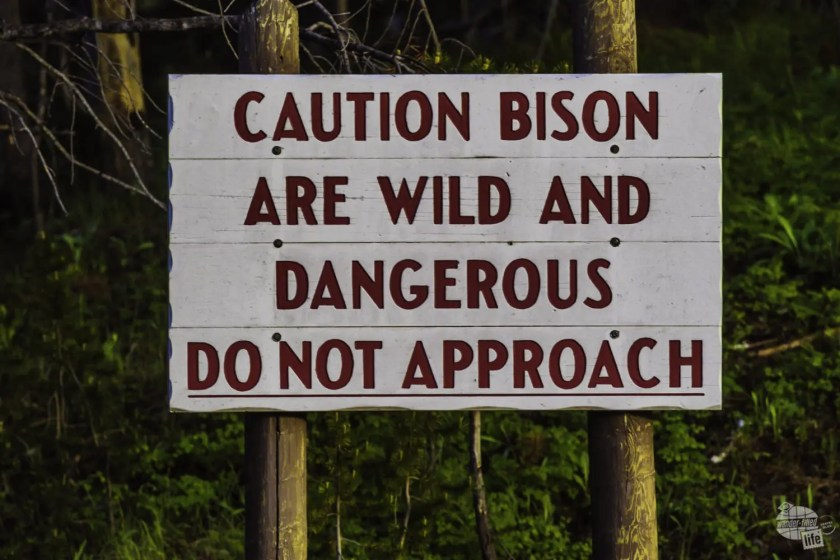 Yellowstone signs remind you to be careful with wildlife.