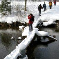 8. Januar Winterwanderung im Tösstal