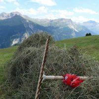 Temporär- oder Festanstellung: In den Bergen gibt es immer Jobs