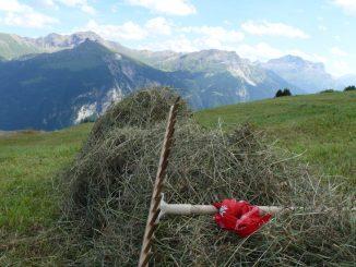 Bergheuen, Berghilfe Schweiz