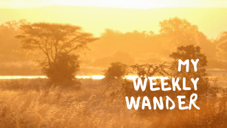 My Weekly Wander by Wanderfull.fr