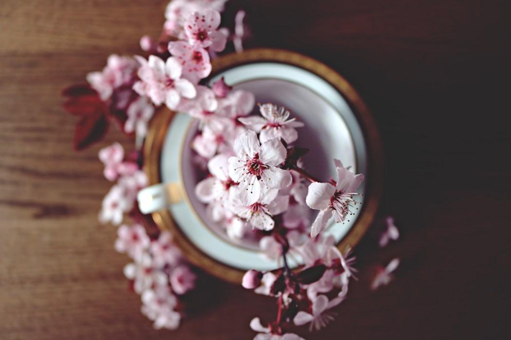 Inspiracje: Moje kosmetyczne odkrycia – najlepsze kosmetyki do pielęgnacji