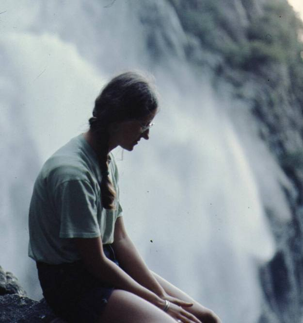 Yosemite Waterfall in the 70s Wandering Chocobo