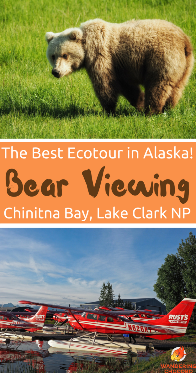 This Alaskan wildlife bear viewing ecotour is a bucket list must! With a short day trip from Anchorage, take a scenic flight out to Lake Clark National Park. See bears in their natural outdoor habitat. Don't miss the Alaskan wildlife photography!