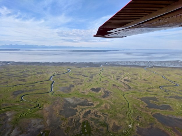 cook-inlet-anchorage-alaska-flight-seeing-tour