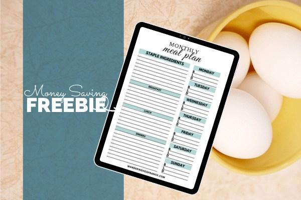 meal plan freebie