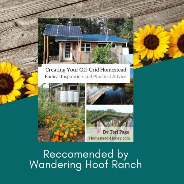 off grid homesteading