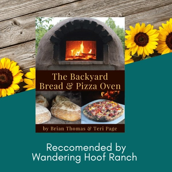 bread and pizza oven