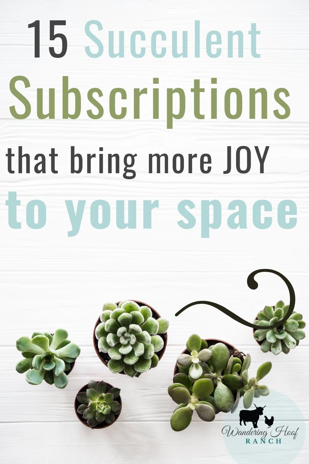 15 succulent subscriptions that bring more Joy to your space pin image