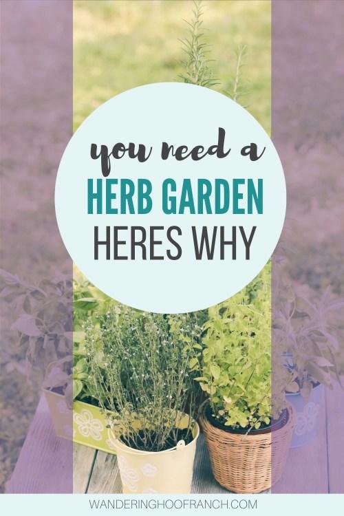 balcony herb garden pin image