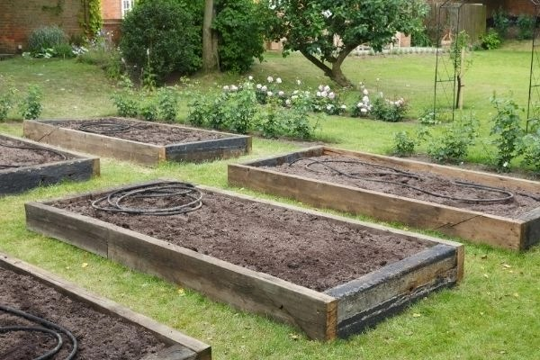 empty raised garden beds in a backyard ready to be planted in