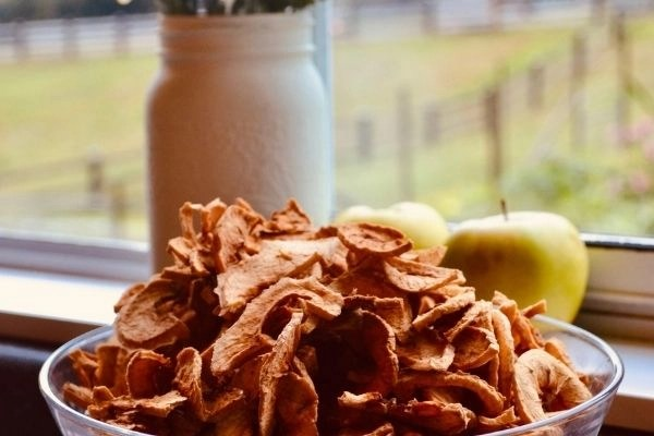 bowl of apple chips sitting on counter with apples in background with window