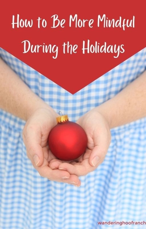 Learn these helpful tips to find relief from holiday stress during busy Thanksgiving and Christmas traditions and celebrations. Learning how to be more mindful with these helpful tips will show you how to practice ways to relieve stress all year long to help find relief during these busy holiday times.