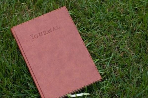 pink journal on grass