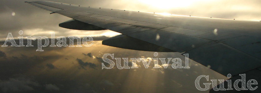 Airplane Survival Guide
