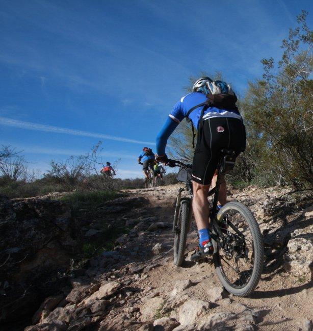 cost of mountain biking