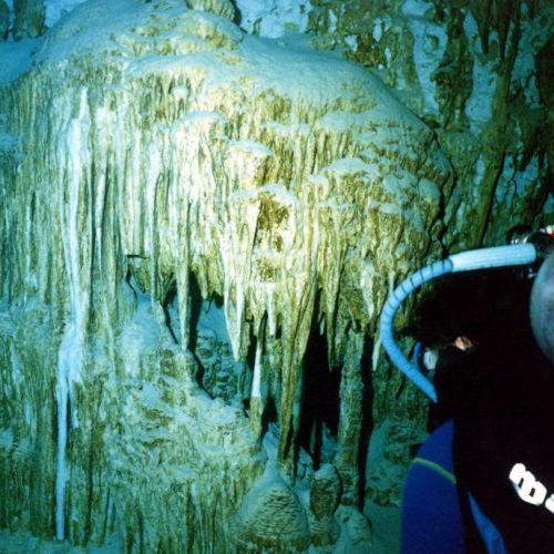 cenote dive sites
