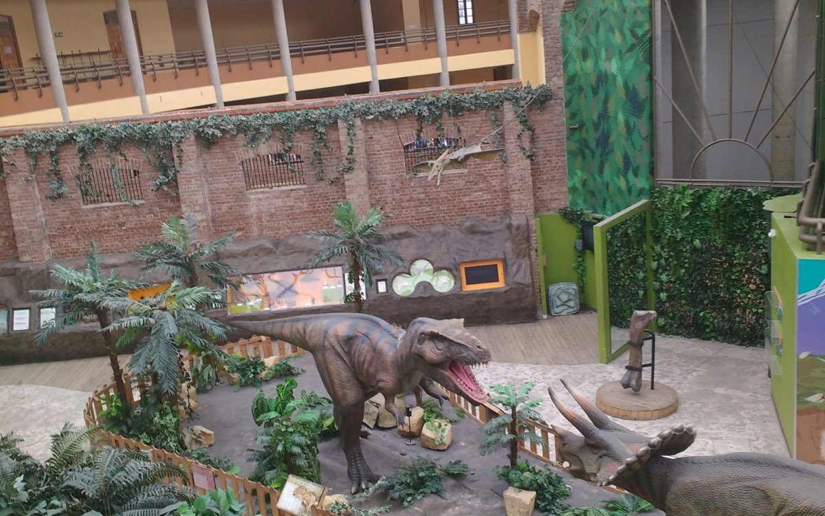 Traveling with Kids? Go See the Museo de los Niños in Costa Rica