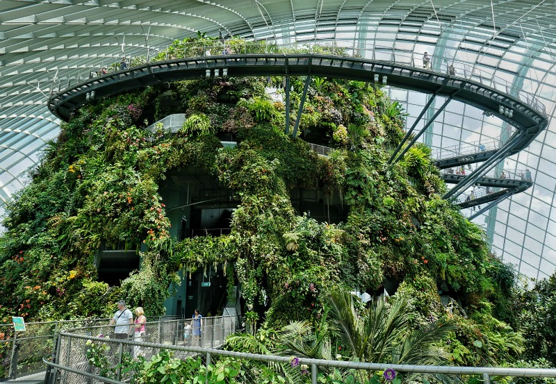 Singapore Activities