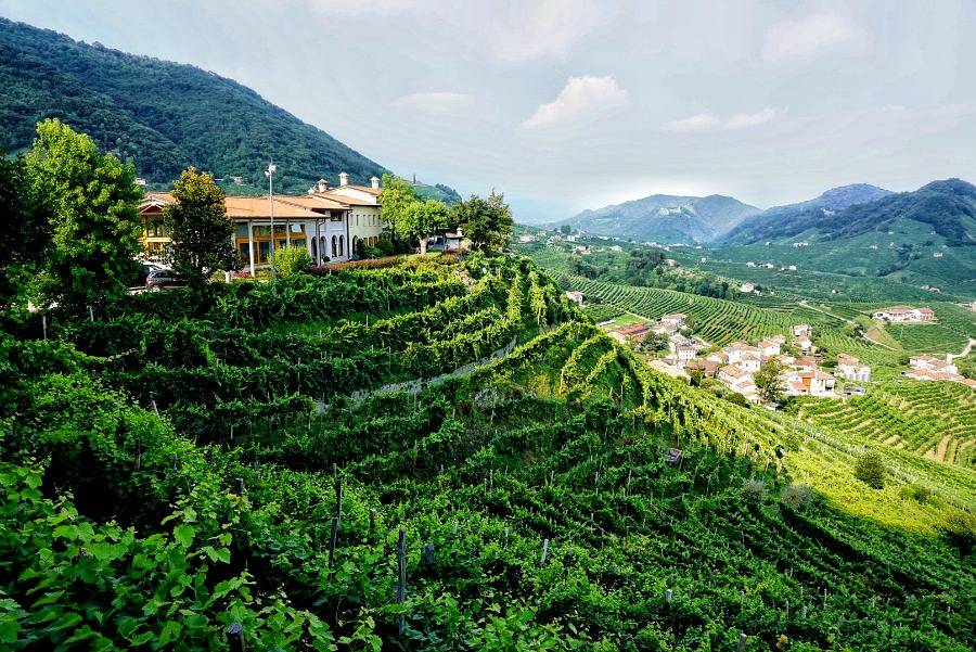 Guide to Italy's Prosecco Road