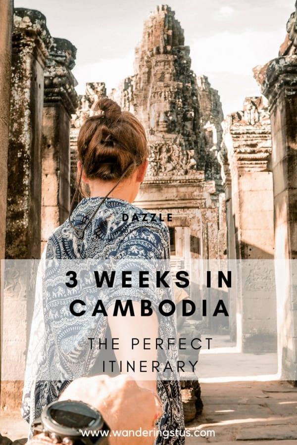 Three weeks in Cambodia pin