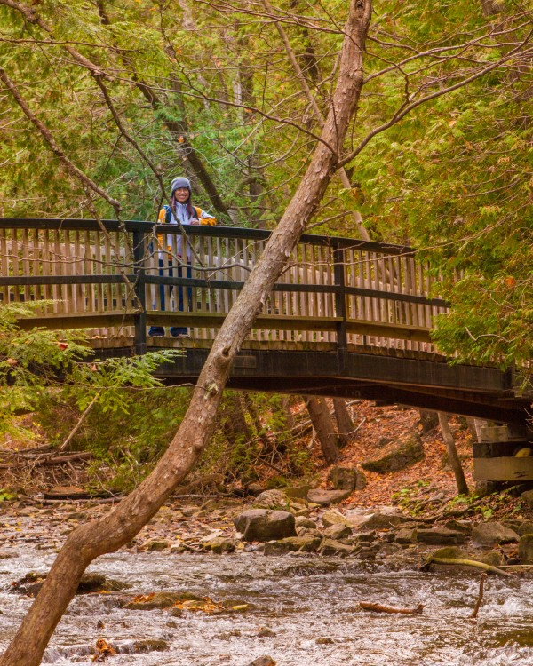 A woman stands on a bridge over a creek