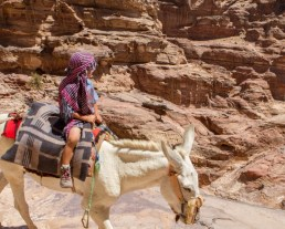 Young boy wearing headscarf rides a horse in Petra