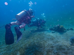Two scuba divers explore the reefs under the Red Sea - Traveling Jordan with Kids