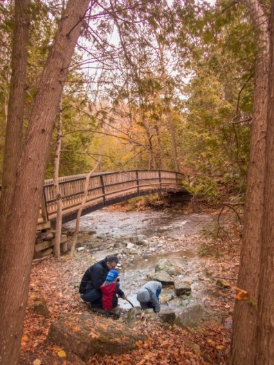 A father and two boys play in a stream