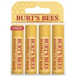 Burts Bees Lip Balm - Items to Keep Kids Healthy When Travelling