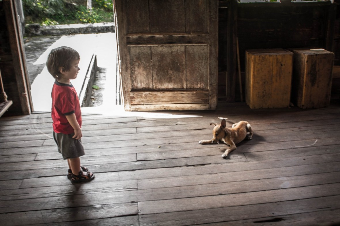 Grenada Tour -C and the Dog