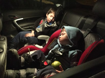Two children sleep in a carseat - helping kids find nap time on the road
