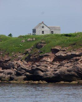 An abondoned house on Bonaventure Island.