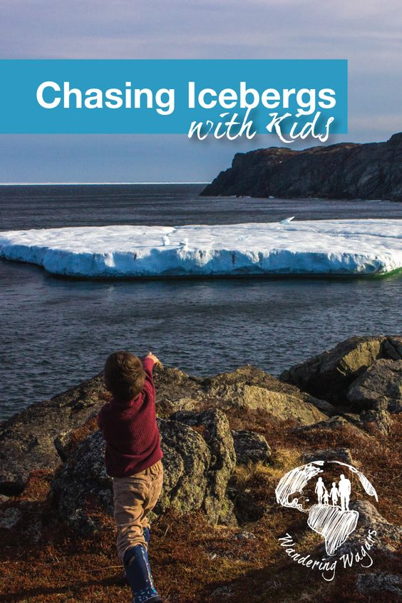 Chasing Icebergs with Kids - Pinterest