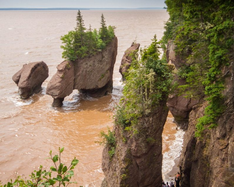 View of Hopewell Rocks from above during high tide.