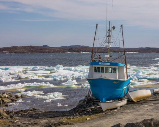 Fishing Boat docked amidst ice floes in the bay.