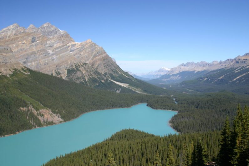 View of Peyto Lake in Banff National Park on our bucket list destinations in Canada.