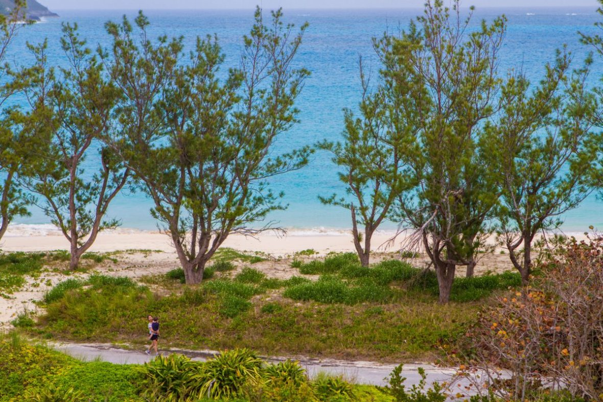 View of Long Bay from the path at Cooper's Point Nature Reserve a Bermuda National Park.