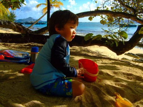 A young boy plays in the shade of palm trees on a tropical island in the Caribbean - Swimming with turtles in the Tobago Cays