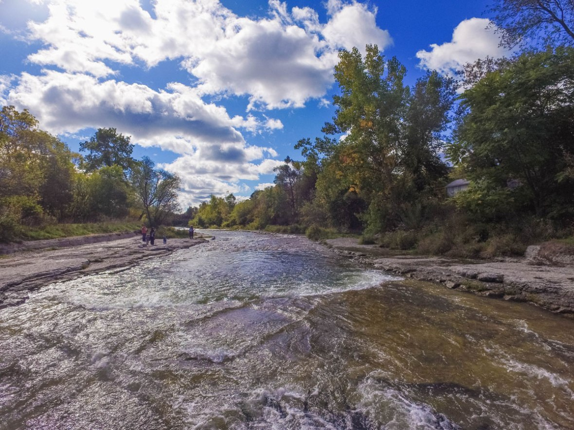 The Salmon run in the Ganaraska river is one of the amazing fall activities in Ontario.