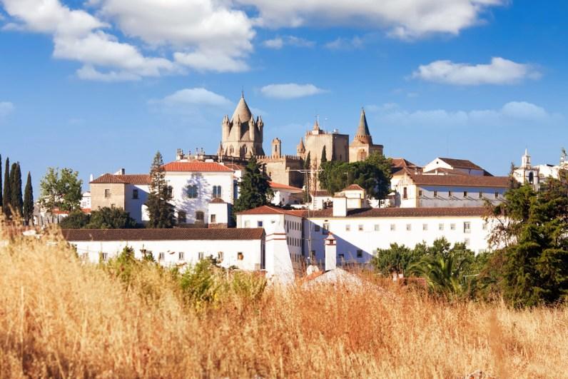 The town of Evora, Portugal seen through a grassy field
