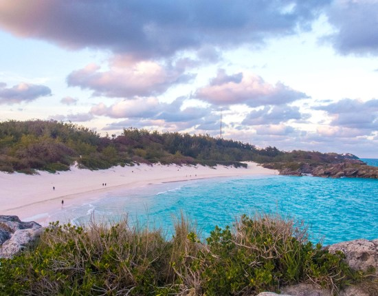 Pink sand and turquoise water of Horseshoe Bay Beach in Bermuda