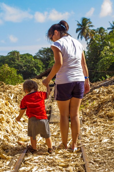 A mother and young boy hold hands while walking the rail tracks of the River Antoine Rum Distillery in Grenada