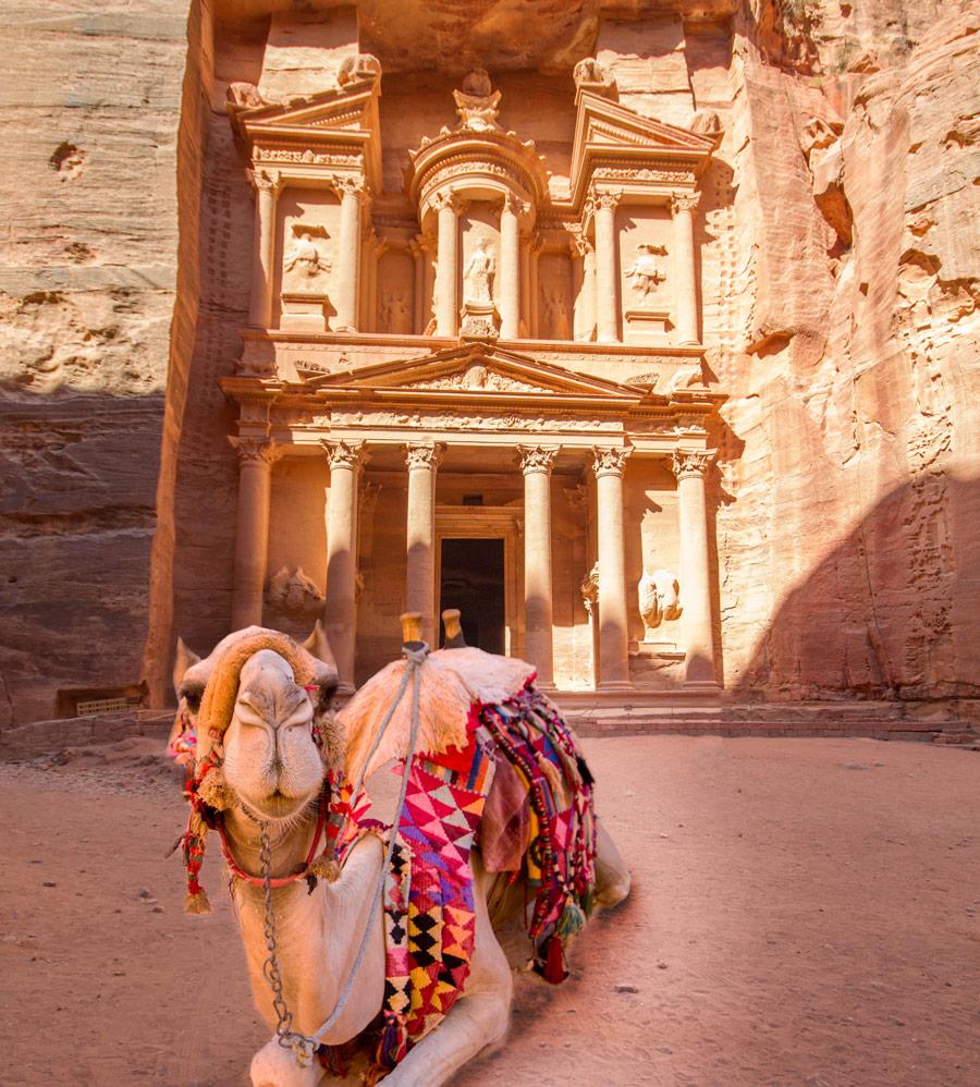 نتيجة بحث الصور عن A camel beneath the Treasury, Petra