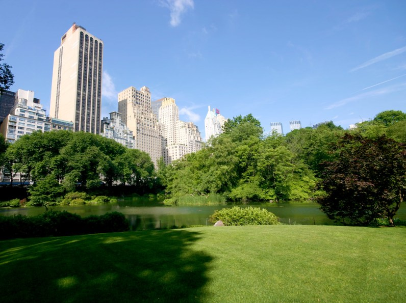 View of Central Park showing the pond and the surrounding skycrappers of New York City.