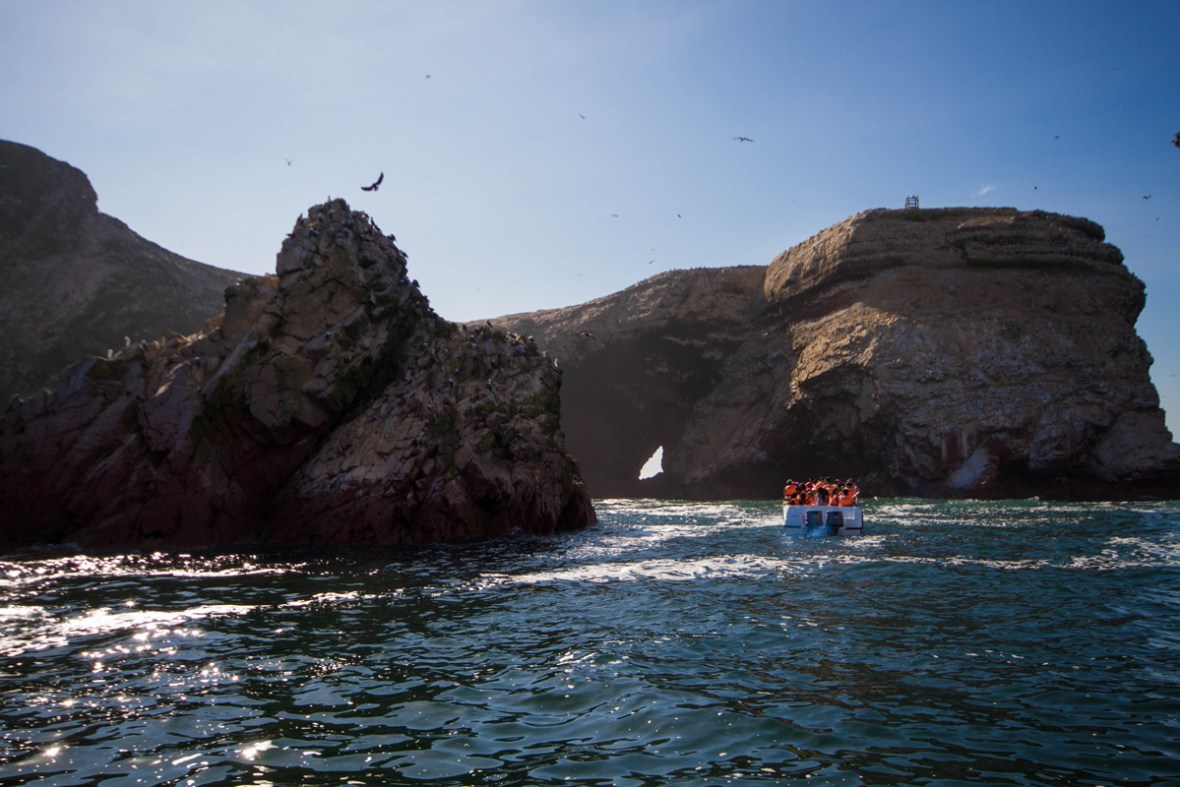 Stone arches and birds of the Paracas Nature Reserve in Peru