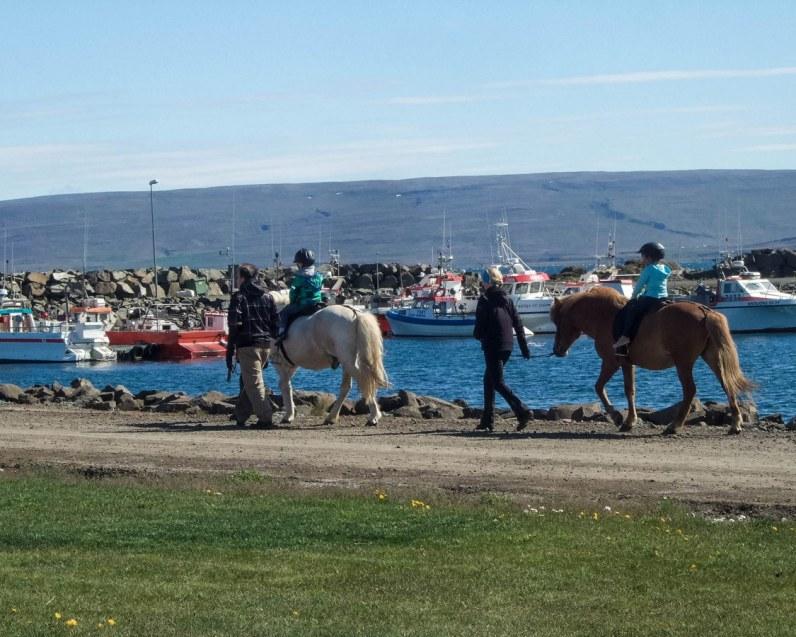 Children ride Icelandic horses at a festival in Holmavik, Iceland